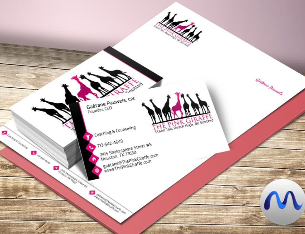 Logo and Brand Identity for The Pink Giraffe